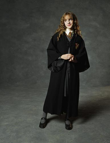 hermione granger fondo de pantalla called Chamber of Secrets