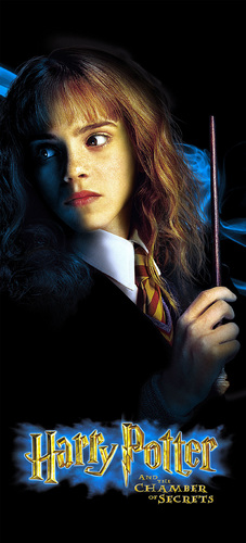 Hermione Granger wallpaper entitled Chamber of Secrets