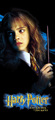Chamber of Secrets - hermione-granger photo