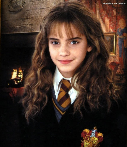 hermione granger fondo de pantalla with a business suit titled Chamber of Secrets