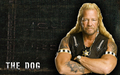 Dog - dog-the-bounty-hunter photo