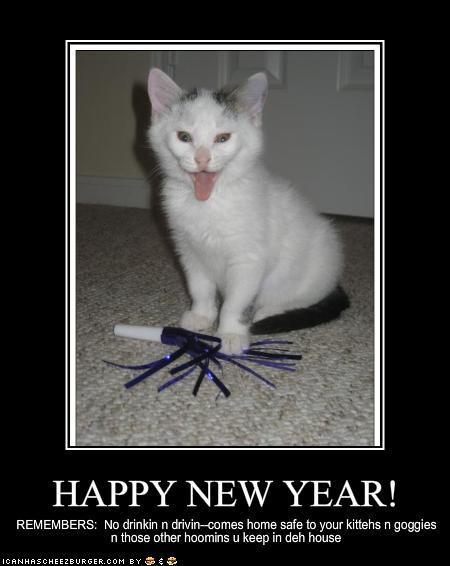 Happy-New-Year-lol-cats-3321985-450-566.