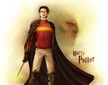 Harry Potter............. - edward-vs-harry photo