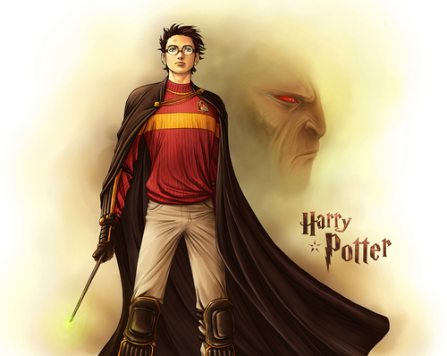 Harry Potter.............