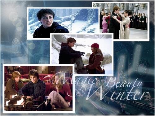 Harry Potter.............