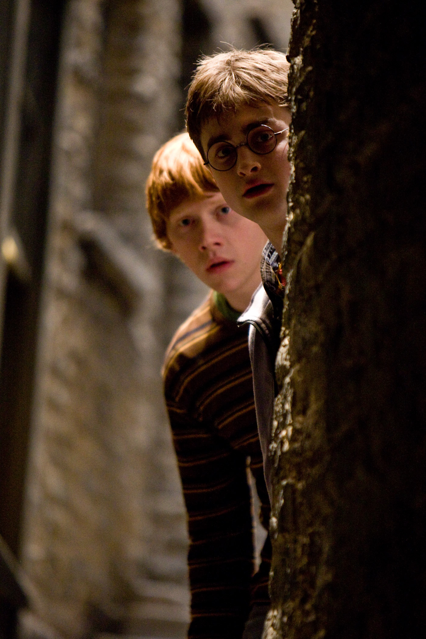 Harry and ron harry potter photo 3309053 fanpop - Rone harry potter ...