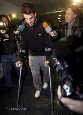 Injured Cesc