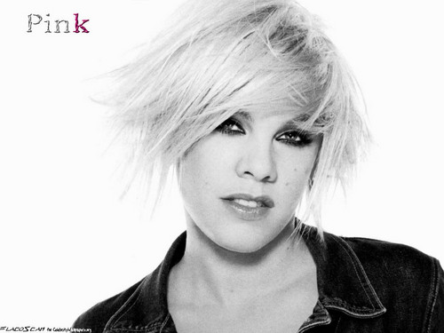 Pink wallpaper with a portrait titled P!nk