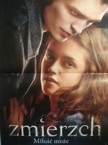 Poster Twilight in Polish Bravo