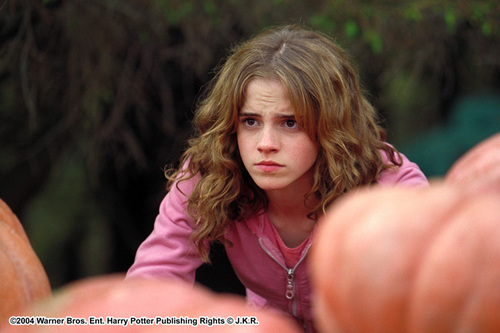 hermione granger fondo de pantalla probably containing a portrait entitled Prisoner of Azkaban
