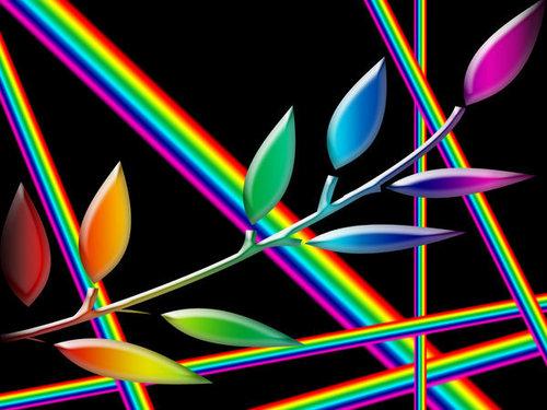 pelangi, rainbow Leaf