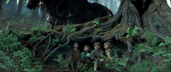 The Fellowship of the Ring: Shortcut to Mushrooms