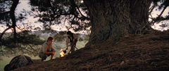 The Fellowship of the Ring: The Passing of the Elves