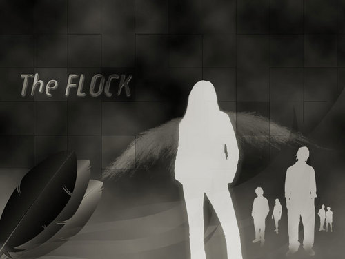 The Flock (dark)