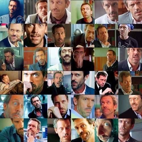 The Many Faces of Greg House 2