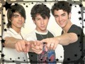 jonas brothers - the-jonas-brothers wallpaper
