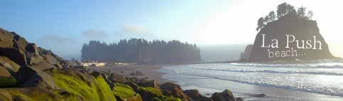 la push beach, pwani
