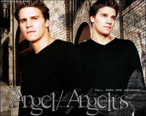 ángel fondo de pantalla titled Angel/Angelus