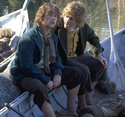 Pippin Lord Of The Rings. Merry + Pippin