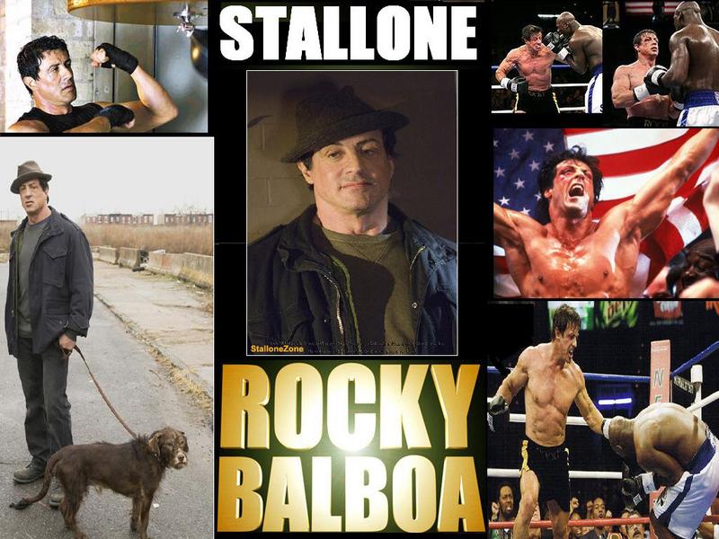 wallpaper rocky. Rocky - Rocky Wallpaper
