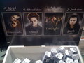 Twilight Borders Posters - twilight-series photo