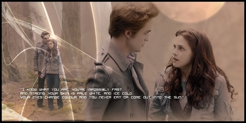 Twilight frases Headers