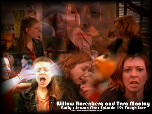 Buffy The Vampire Slayer kertas dinding possibly containing a portrait titled Willow and Tara