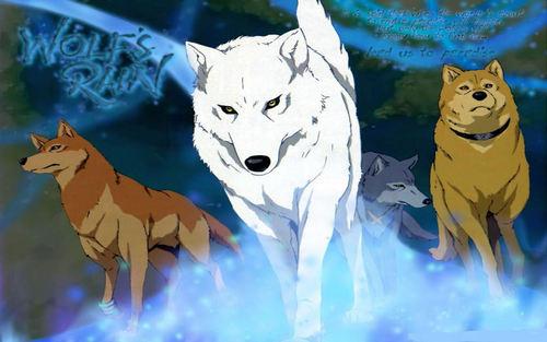 Wolf's Rain 1440x900