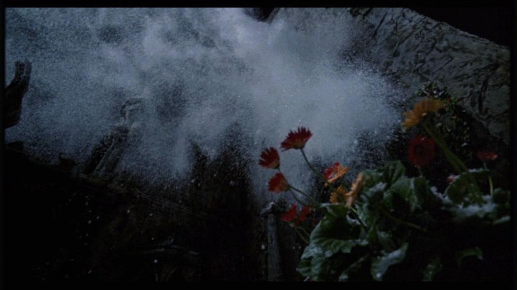 Movie Screencaps Edward Scissorhands Image 3431721