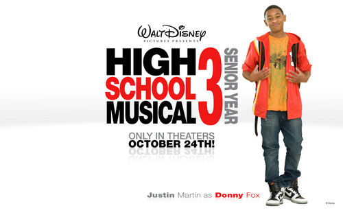 High School Musical 3 wallpaper probably with a portrait titled nini