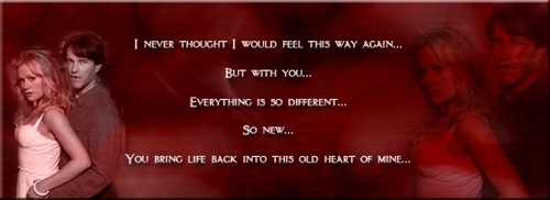 to amor vampire