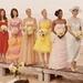 27 Dresses các biểu tượng
