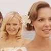27 Dresses चित्र containing skin and a portrait titled 27 Dresses आइकनों