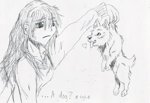 Maximum Ride wallpaper with anime entitled A Dog?
