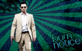 jeffrey-donovan - Burn Notice background wallpaper