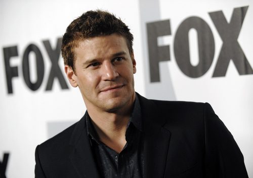 David Boreanaz @ 2009 fox, mbweha Winter All-Star Party