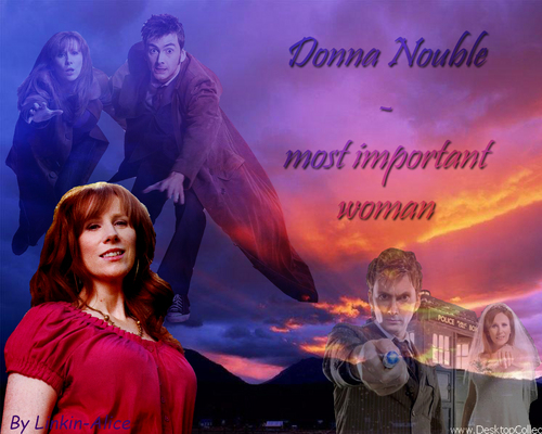 Donna Noble kertas dinding containing a konsert titled Doctor and Donna