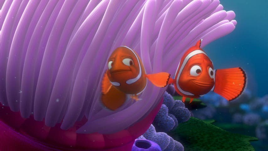 Viewtopic besides WhiteSpottedCichlid likewise Finding Nemo Screencap also Watch moreover Content6 flixster   question 37 36 27 3736272 std. on oscar fish background