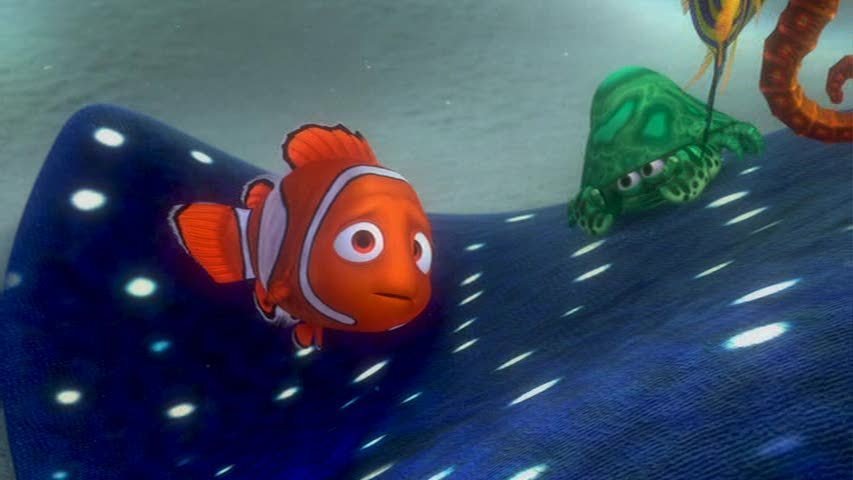 Http Fanpop Com Clubs Finding Nemo Images 3562246 Title Finding Nemo Screencap
