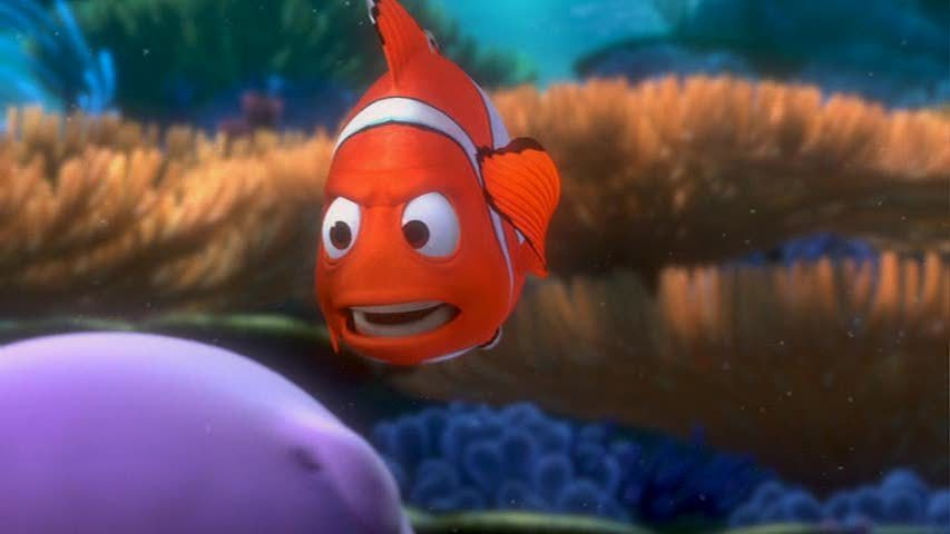 Http Fanpop Com Clubs Finding Nemo Images 3562286 Title Finding Nemo Screencap