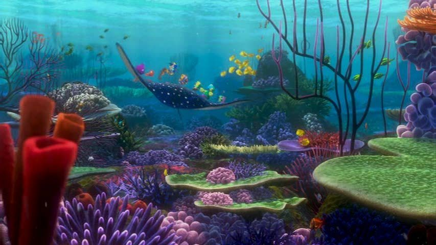 finding nemo coral reef - photo #23