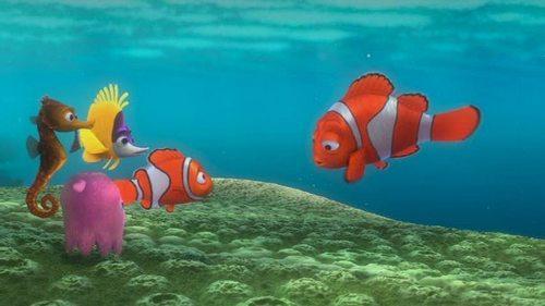 Finding Nemo wallpaper entitled Finding Nemo