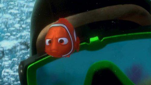 Finding Nemo kertas dinding entitled Finding Nemo
