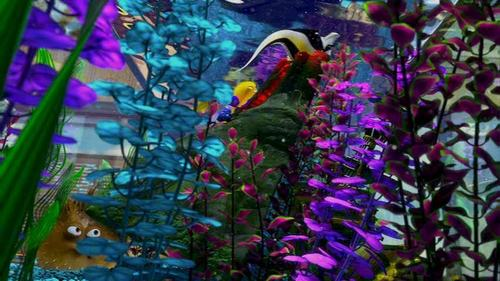 Finding Nemo wolpeyper with a chinese wistaria and a flowerbed entitled Finding Nemo
