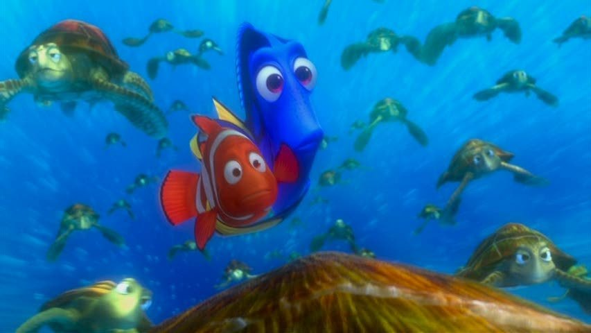 Http Www Fanpop Com Clubs Finding Nemo Images 3569541 Title Finding Nemo Screencap