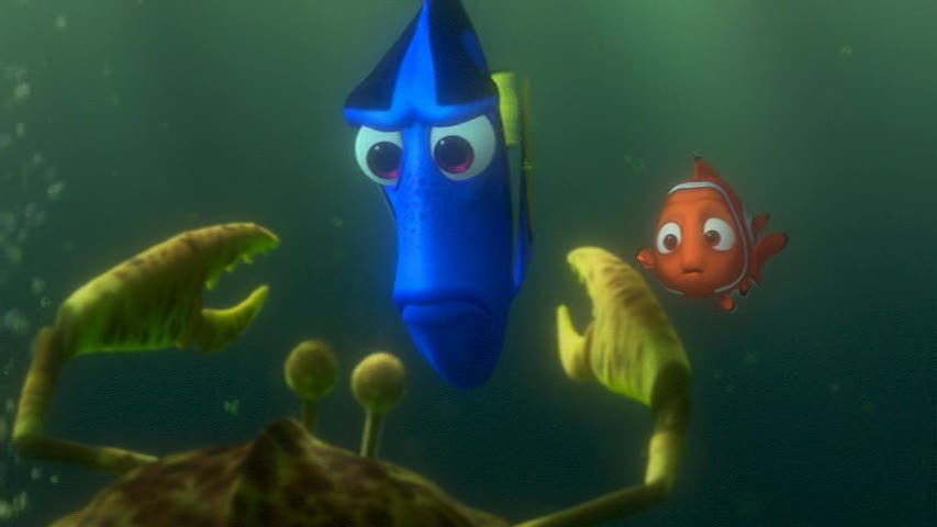 Http Fanpop Com Clubs Finding Nemo Images 3569580 Title Finding Nemo Screencap