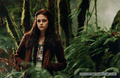 Four New Stills + Updated Shoot Pic    - twilight-series photo