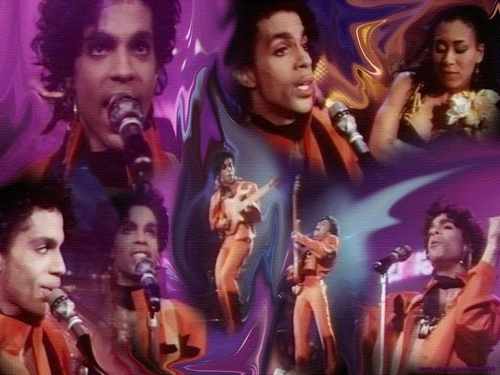 Prince wallpaper possibly with a concert entitled Prince