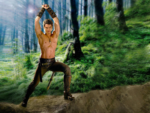 Richard - legend-of-the-seeker Wallpaper