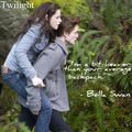 SWEET.! - twilight-series photo